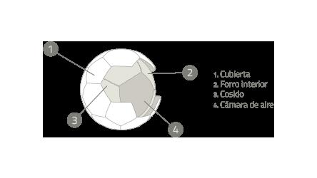Partes del balón